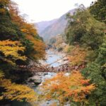 大歩危小歩危 祖谷のかずら橋 琵琶の滝が美しい