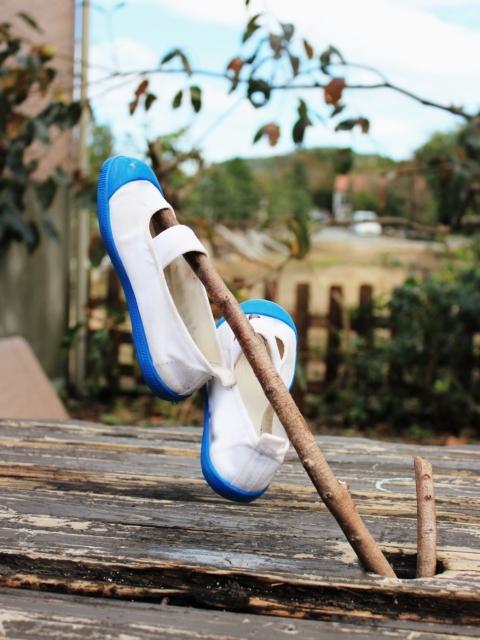 オキシクリーンで洗った靴